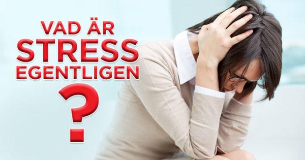 Vad är stress egentligen?