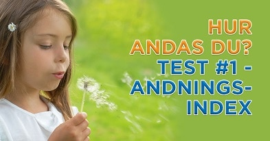 Andningstest #1 - Andningsindex